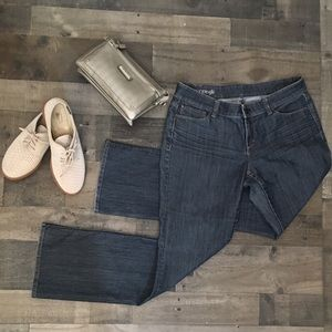 Ann Taylor Modern Fit Jeans 10p petite